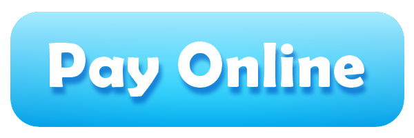 Image result for online payment button